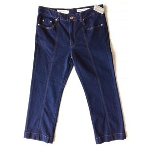 NWOT Pilcro & the Letterpress Anthropologie Jeans